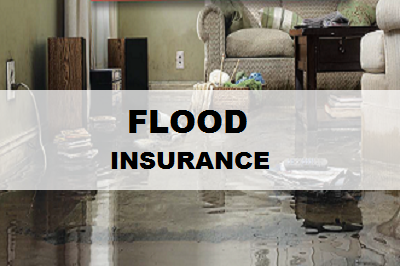 Flood Insurance in NC